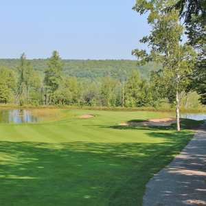 Treetops - Masterpiece golf course - hole 8