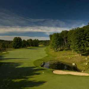 Tribute Golf Course at Otsego: #7