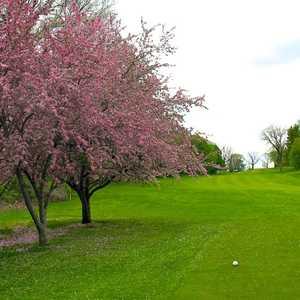 Ann Arbor Golf & Outing Club: #6