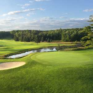 Alpine at Boyne Mountain Resort: #18