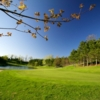 A view of green #4 at Leelanau Club At Bahles Farms