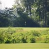 A view of the signature hole #12 at Lake Forest Golf Club