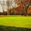 A view of green #4 at Iyopawa Island Golf Course