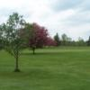 A view of the 9th green protected by a blossomed tree at Devil's Knob Golf Course