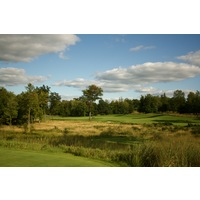 The 14th tee shot at Tullymore Golf Club requires a shot left or right of a tree splitting the fairway.