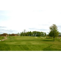 The Orchards Golf Club's 17th hole features a large tree in the fairway.