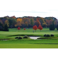 Fall colors are showcased in the background of the second green at the Coyote Golf Club in New Hudson, Michigan.