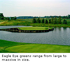 No. 17 at Eagle Eye