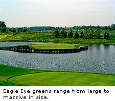 No. 17 at Eagle Eye