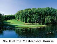 Masterpiece holes in MI