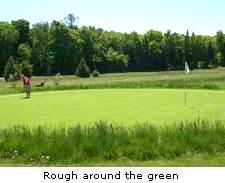 Rough around the green