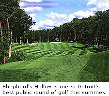 Shepherd's Hollow