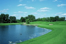 TPC Michigan Course
