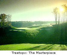 Treetops: The Masterpiece