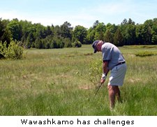 Wawashkamo has challenges