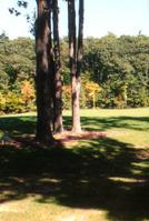 The Golf Club at Thornapple Pointe in Grand Rapids